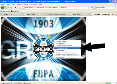 8ª Etapa: Clicar sobre a imagem com o botão direito do mouse, e escolher a opção Salvar Imagem Como.
