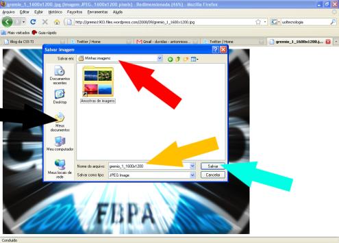 9° Etapaª: Escolher um local onde a imagem será salva. Neste exemplo escolhemos os Meus Documentos, e Depois a pasta Minhas Imagens.